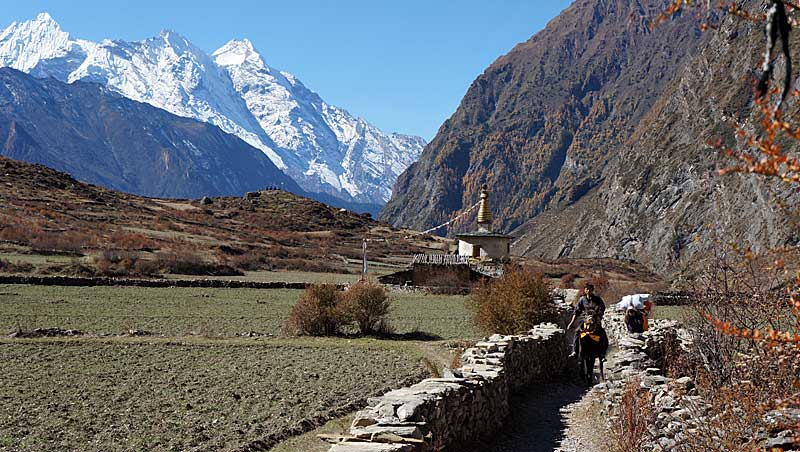 Trekking Manaslu Circuit en Tsum Valley in Nepal