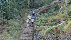 Honderden traptreden Annapurna-trekking