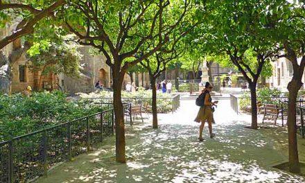 Geurige binnenplaats Antic Hospital de la Santa Creu in Barcelona