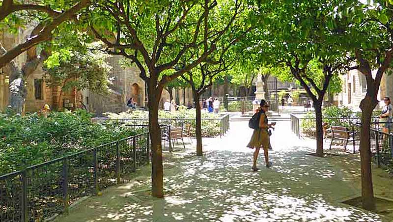 Binnenplaats Hospital de la Santa Creu Barcelona