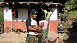 Kip-kurry Kanchenjunga Trek Nepal