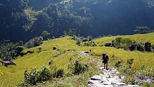 Kunjari Taplejung Kanchenjunga Trek Nepal