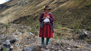 Herderin - Peru - Cordillera Huayhuash - trektocht